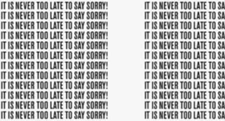 It's Never Too Late to Say Sorry. 366 Sorry-rapporten